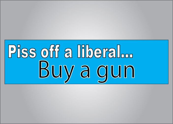 Piss off a liberal buy a gun bumper sticker